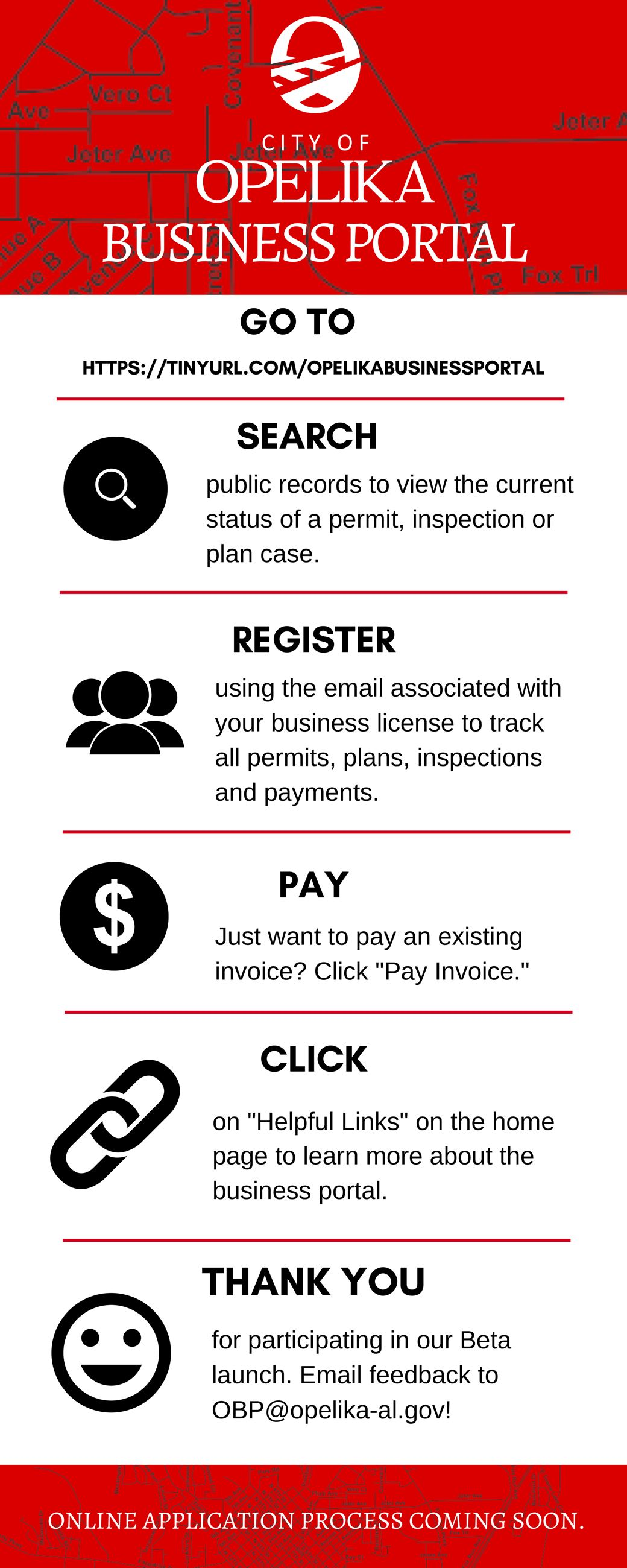 Opelika Business Portal Infographic