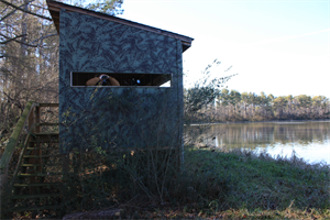 Duck Blind from Outside